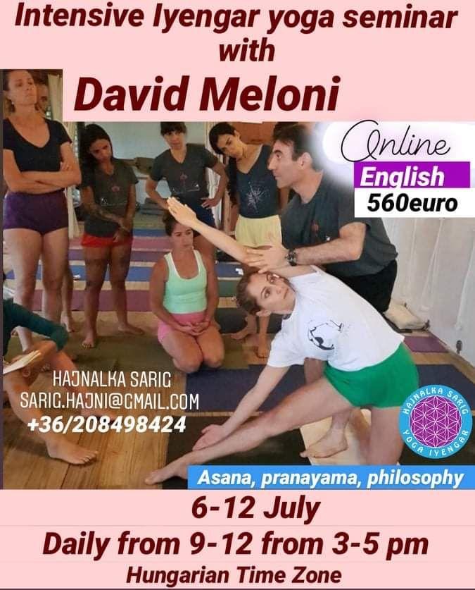 Intensive Summer Seminar With David Meloni July Online Iyengar