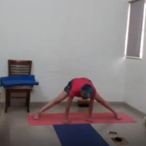 Hip mobility img