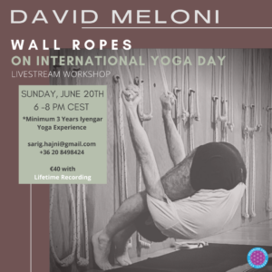Wall ropes workshop