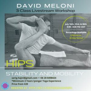 Hip Stability