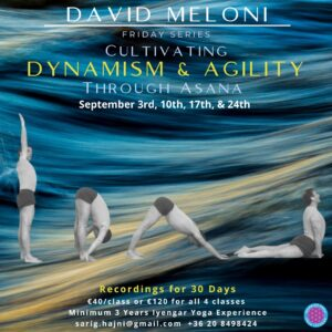 Dynamism & Agility through Asana img